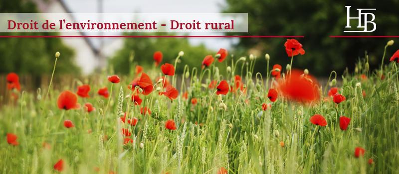Bras Avocats - Droit de l'environnement et droit rural