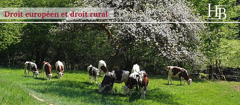 droit rural, droit de l'environnement, origine du lait