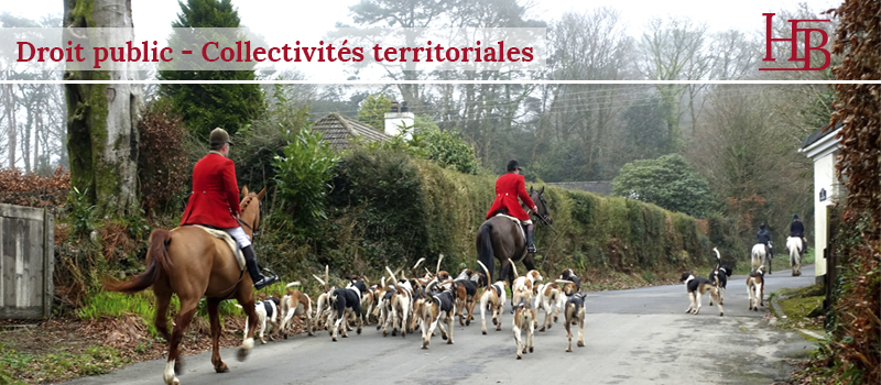 bras-avocat-chasse-courre